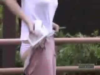 Japanese Sharking